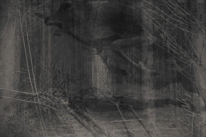 http://www.yolenth.com/files/gimgs/th-1_vandenhoogen_scream-1.jpg